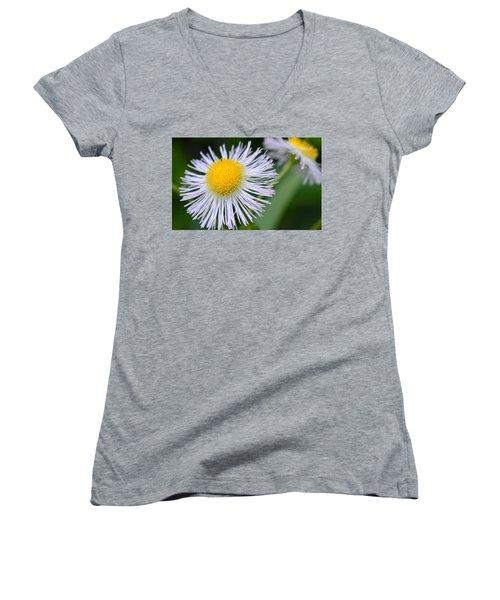 Summer Flower Women's V-Neck