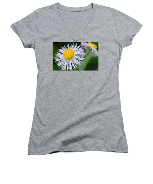 Summer Flower Women's V-Neck (Athletic Fit)