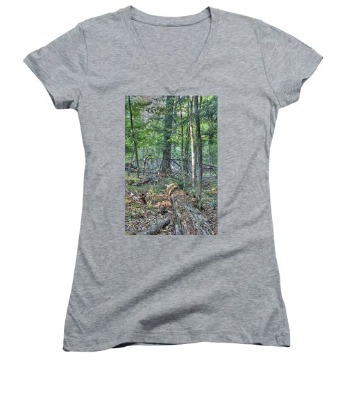 Summer In A Canadian Forest Women's V-Neck (Athletic Fit)
