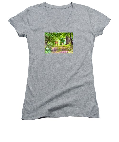 Summer Stroll Women's V-Neck T-Shirt (Junior Cut) by Anthony Baatz