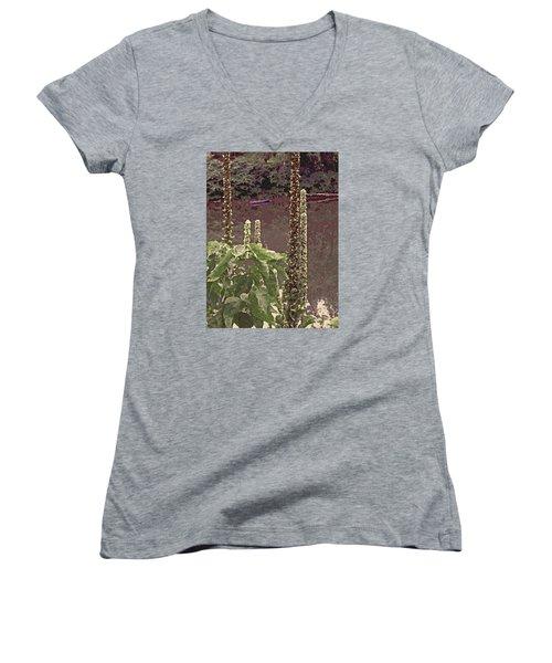 Summer's Last Stand Women's V-Neck T-Shirt