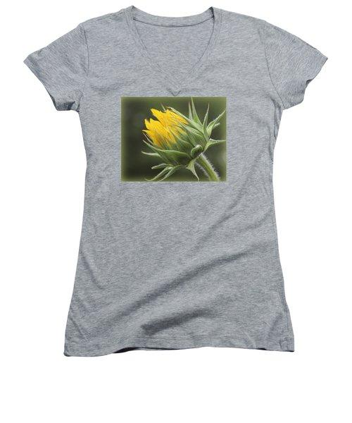 Summer's Promise - Sunflower Women's V-Neck T-Shirt