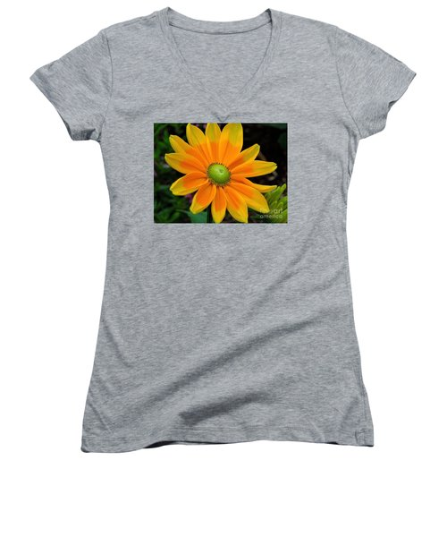 Sunburst Women's V-Neck (Athletic Fit)