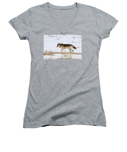 Sunday Stroll Women's V-Neck (Athletic Fit)
