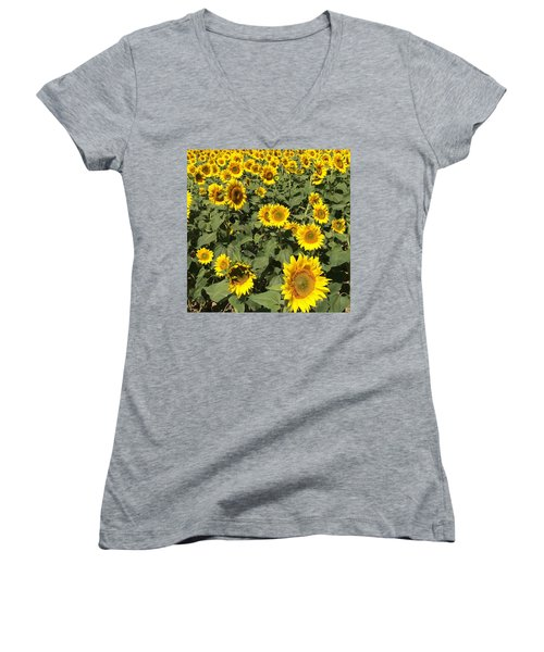 Sunflower 2016 Women's V-Neck (Athletic Fit)