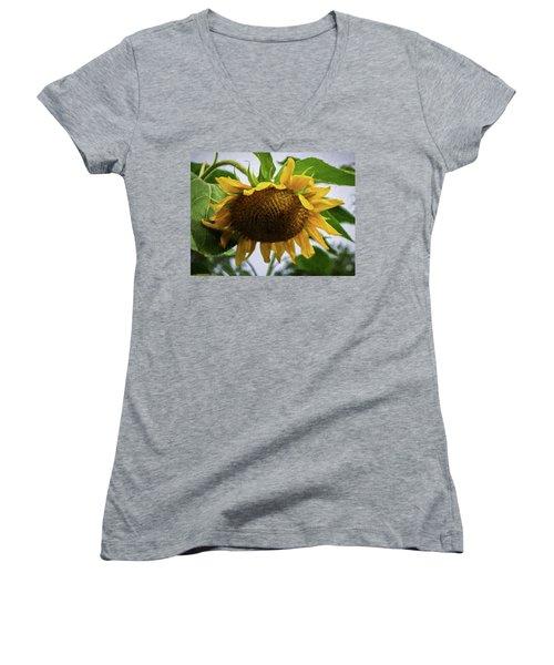 Sunflower Art II Women's V-Neck (Athletic Fit)