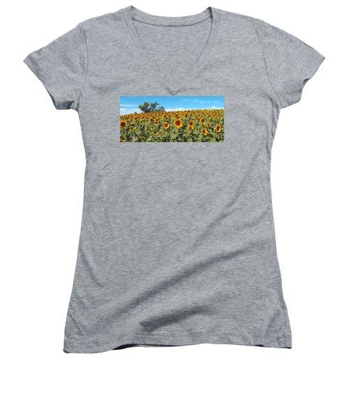 Sunflower Field One Women's V-Neck T-Shirt (Junior Cut) by Barbara McDevitt