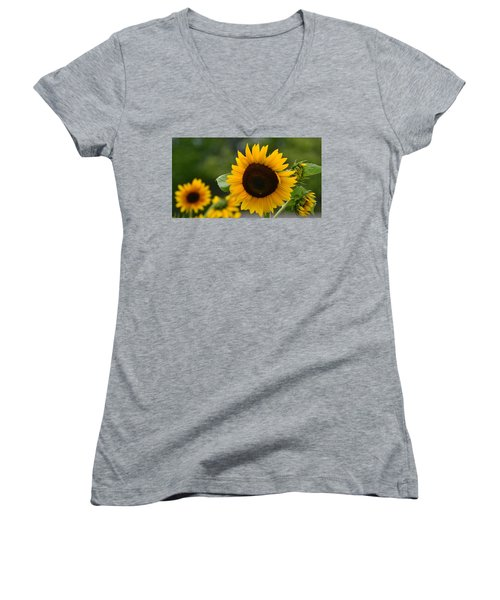 Sunflower Group Women's V-Neck (Athletic Fit)