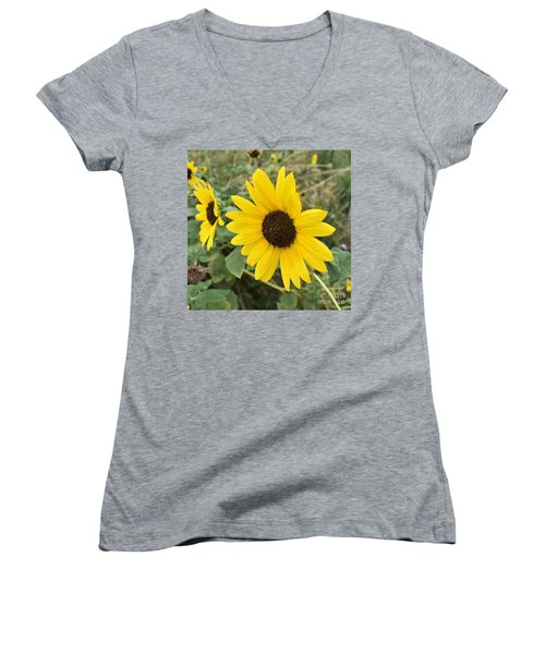 Sunflower Women's V-Neck