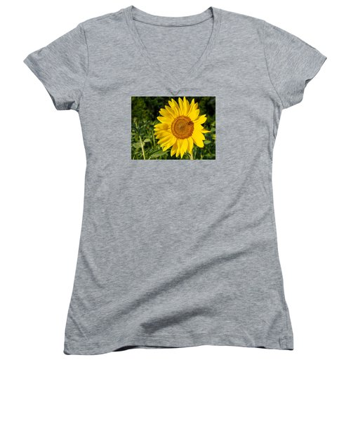 Sunflower With Bee Women's V-Neck T-Shirt