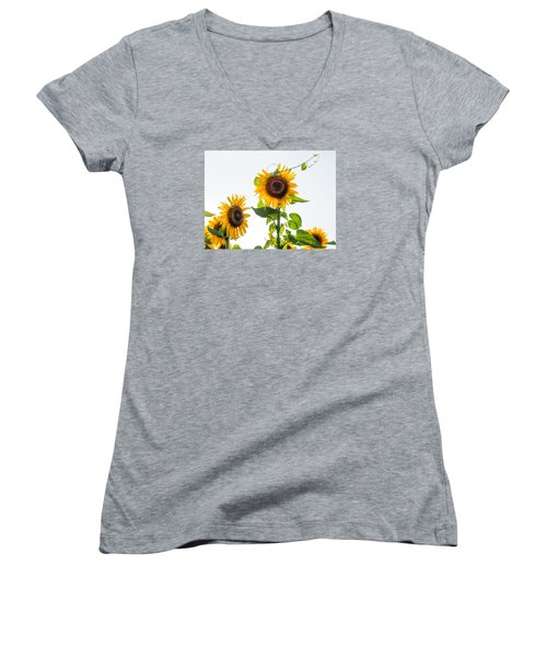 Sunflower With Vine Women's V-Neck (Athletic Fit)