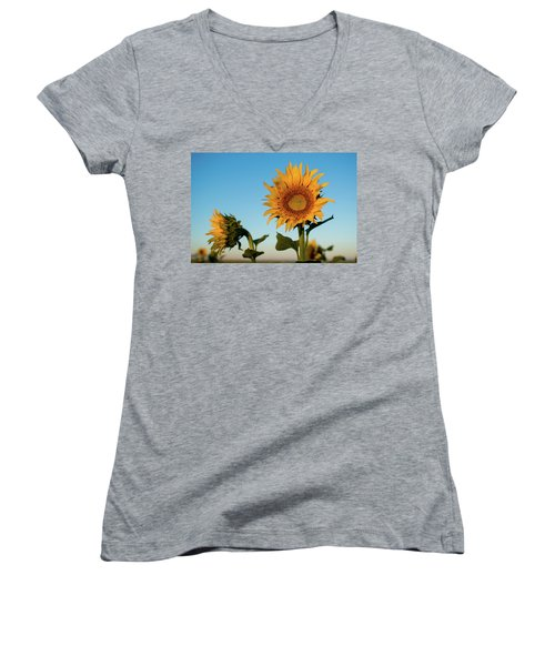 Sunflowers At Sunrise 1 Women's V-Neck