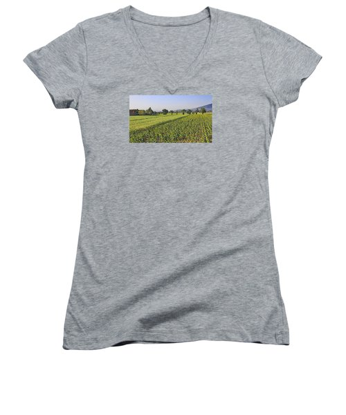 Sunflowers Of Tuscany Women's V-Neck T-Shirt (Junior Cut) by Allan Levin