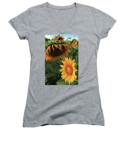 Sunflowers Past And Present Women's V-Neck