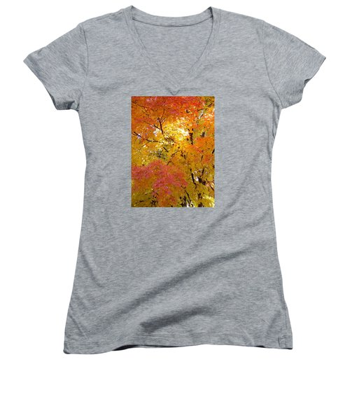Women's V-Neck T-Shirt (Junior Cut) featuring the photograph Sunkissed 2 by Elizabeth Sullivan