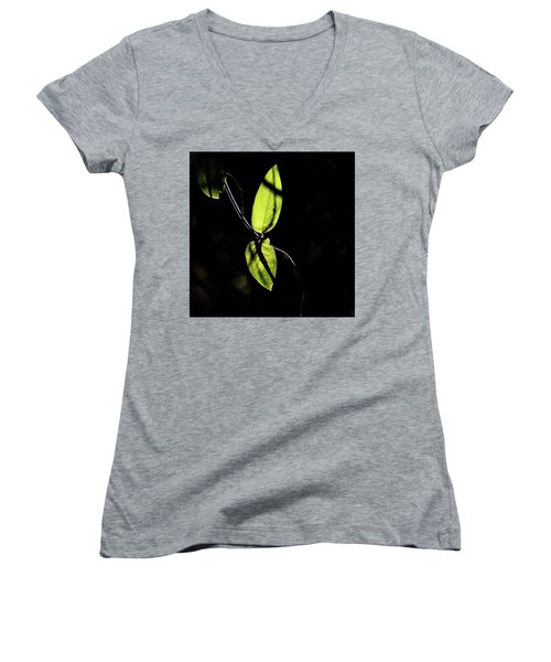 Sunlit Leaves Women's V-Neck T-Shirt (Junior Cut) by Jay Stockhaus