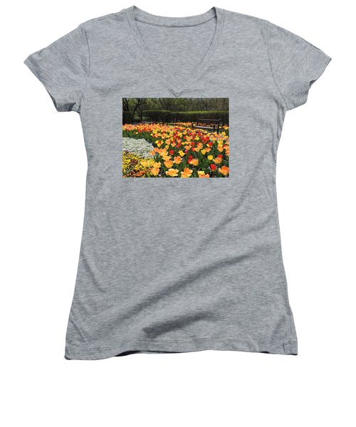 Women's V-Neck T-Shirt (Junior Cut) featuring the photograph Sunny Days by Teresa Schomig
