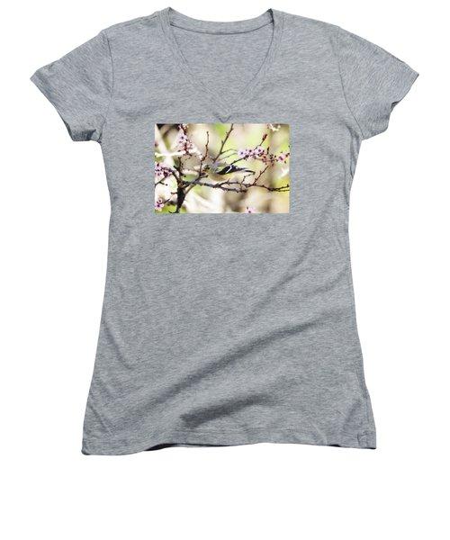 Sunny Days Women's V-Neck T-Shirt (Junior Cut) by Trina Ansel