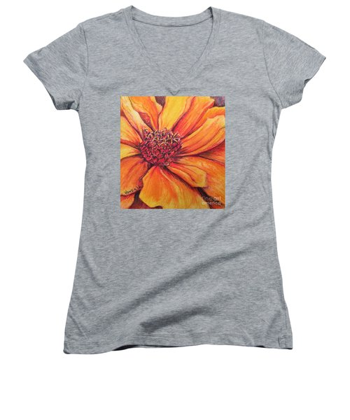 Sunny Perspective Women's V-Neck T-Shirt