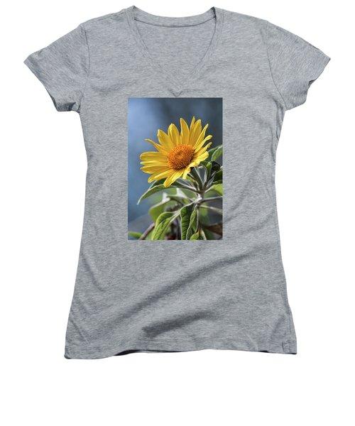 Women's V-Neck T-Shirt (Junior Cut) featuring the photograph Sunny Side Up  by Saija Lehtonen