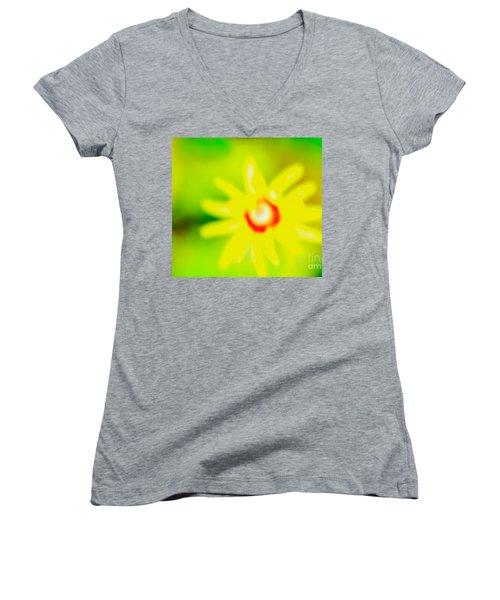 Sunnyday Women's V-Neck T-Shirt