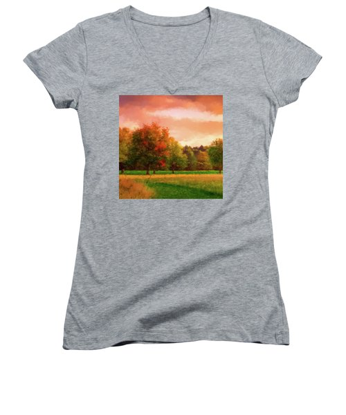 Sunset Field Women's V-Neck T-Shirt (Junior Cut)