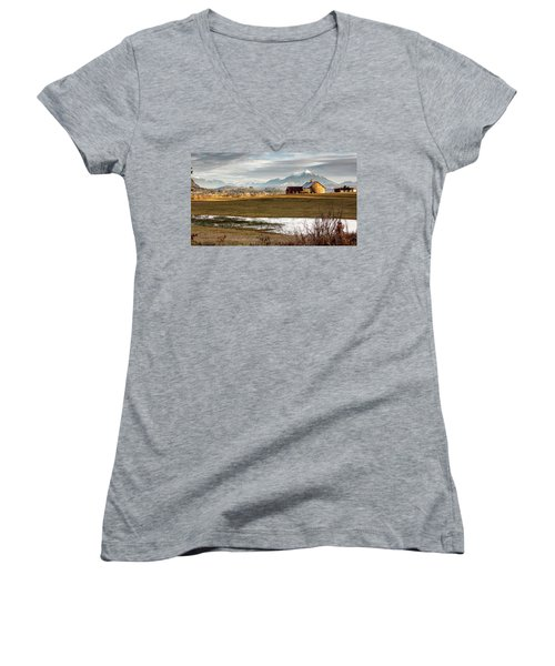 Sunset On The Farm Women's V-Neck (Athletic Fit)