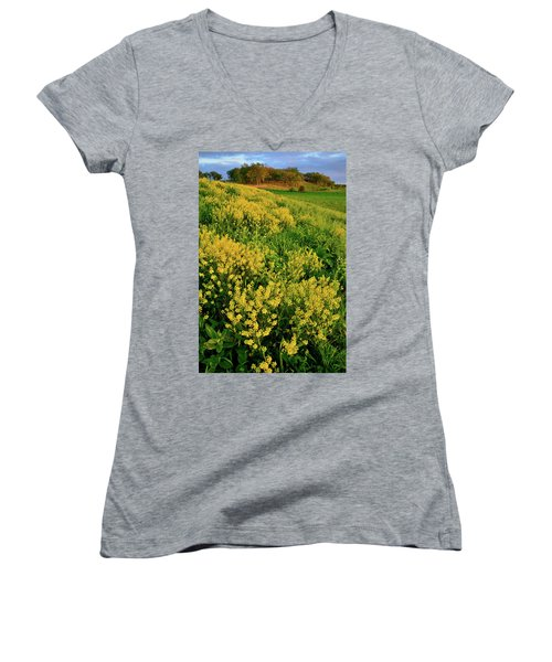 Sunset On Wildflowers In Glacial Park Mccd Women's V-Neck (Athletic Fit)