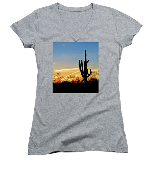 Sunset Saguaro In The Spring Women's V-Neck (Athletic Fit)