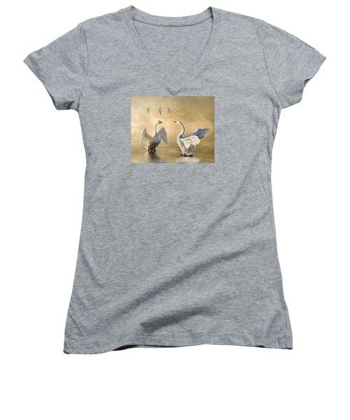 Sunset Squabble Women's V-Neck T-Shirt (Junior Cut) by Brian Tarr