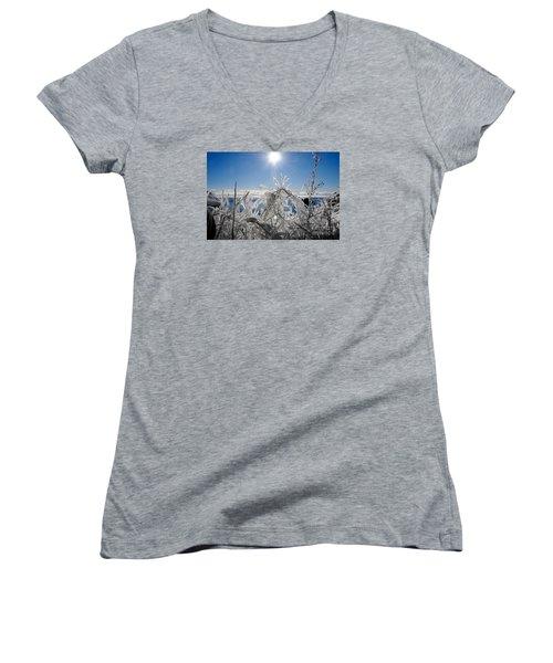 Sunshine And Ice Women's V-Neck T-Shirt (Junior Cut) by Sandra Updyke