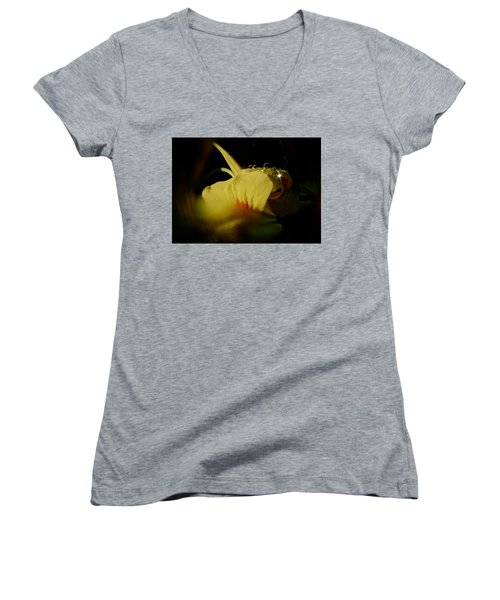 Sunshine In The Bubble Women's V-Neck T-Shirt (Junior Cut) by Richard Cummings