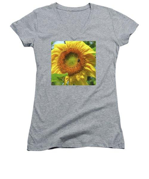 Sunshine In The Garden 1 Women's V-Neck T-Shirt (Junior Cut) by Brooks Garten Hauschild