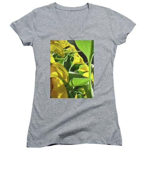 Sunshine In The Garden 18 Women's V-Neck T-Shirt (Junior Cut) by Brooks Garten Hauschild