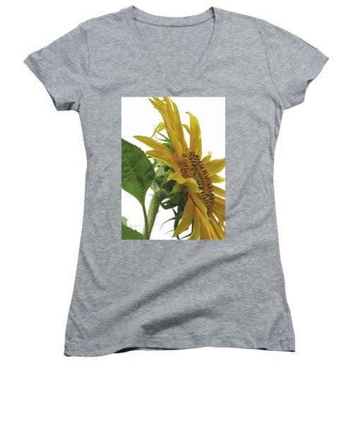 Sunshine In The Garden 25 Women's V-Neck T-Shirt (Junior Cut) by Brooks Garten Hauschild