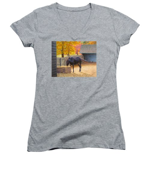 Supper Time Women's V-Neck T-Shirt (Junior Cut) by Joe Bergholm