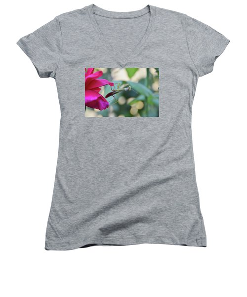 Women's V-Neck T-Shirt (Junior Cut) featuring the photograph Surprise At The Rose by Debby Pueschel