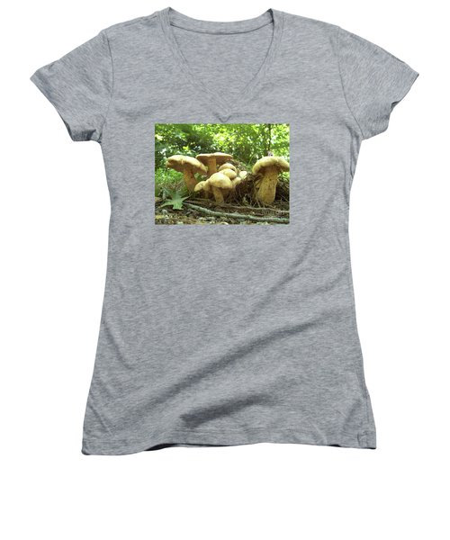 Surprise Fungi In Gibbs Garden Women's V-Neck