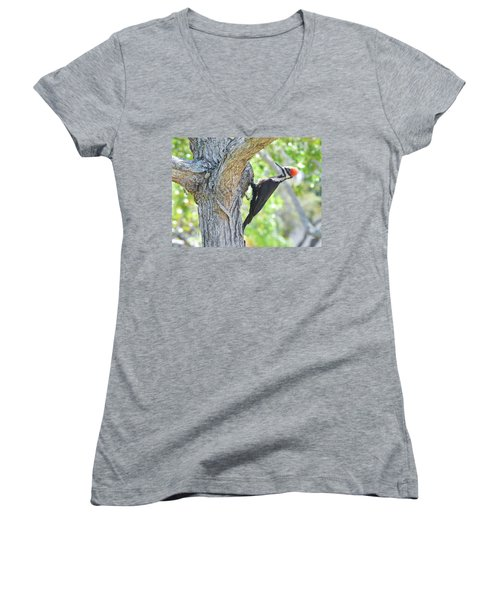 Surprised By Pileated Women's V-Neck (Athletic Fit)