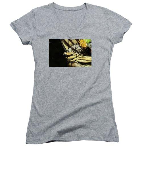 Swallowtail Butterfly Women's V-Neck