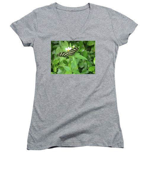 Swallowtail Butterfly On Leaf Women's V-Neck T-Shirt