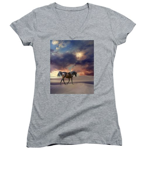 Swan Of Desert Women's V-Neck T-Shirt