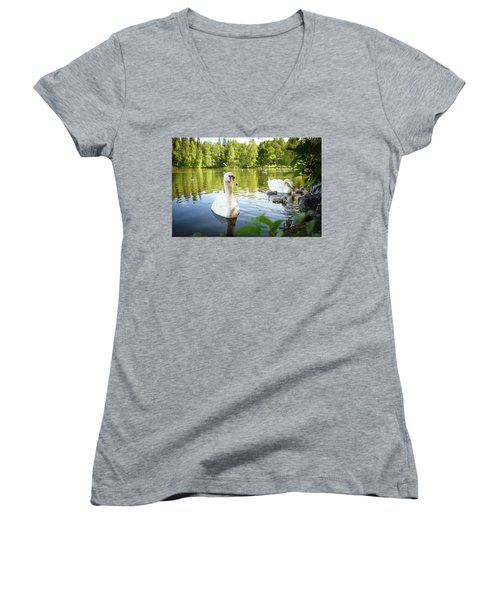 Swans With Chicks Women's V-Neck T-Shirt