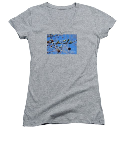 Women's V-Neck T-Shirt (Junior Cut) featuring the photograph Sweet Gum Catkins 20120405_206a by Tina Hopkins