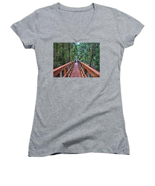 Swing Bridge Women's V-Neck T-Shirt