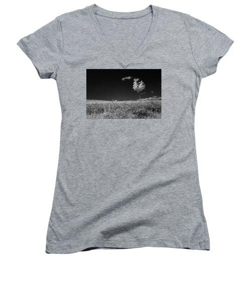 Sycamore Women's V-Neck T-Shirt (Junior Cut) by Keith Elliott