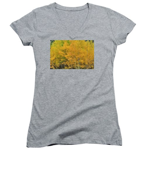 Women's V-Neck featuring the photograph Symphony In Gold by Ron Cline