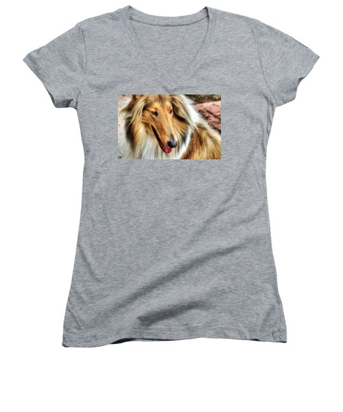 Taffy Collie Women's V-Neck T-Shirt