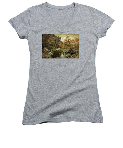 Taking A Hike Women's V-Neck T-Shirt (Junior Cut) by Barbara Manis