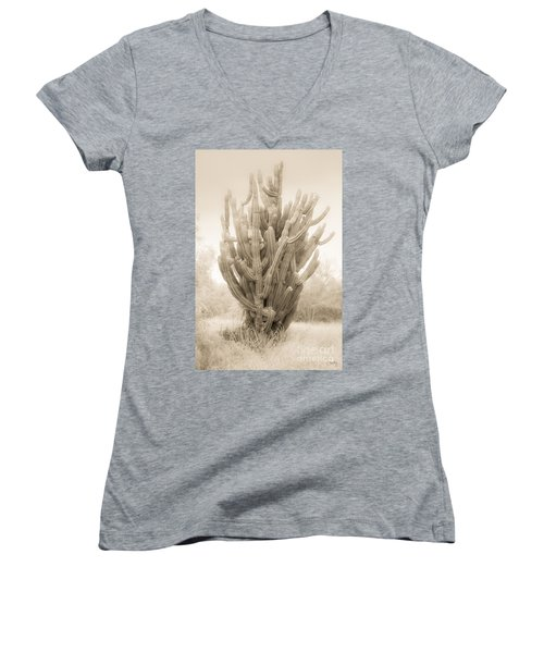 Tall Cactus In Sepia Women's V-Neck